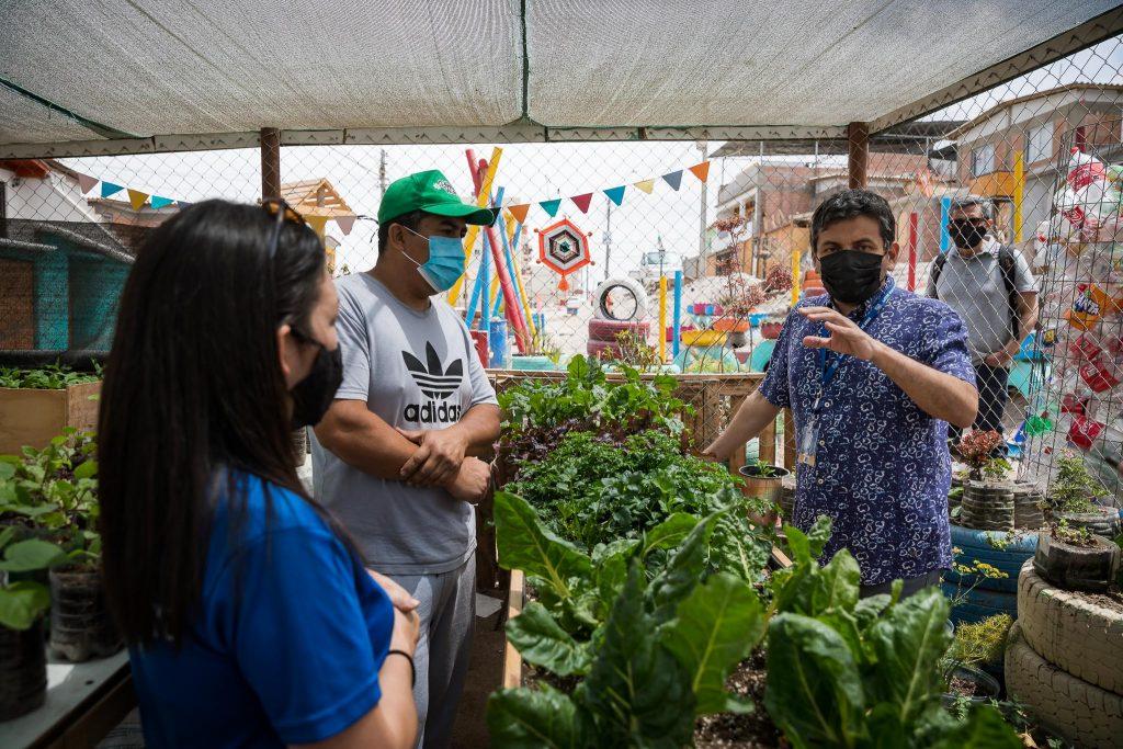 Arica: Huerto comunitario provee de hortalizas a olla común del sector norte de la ciudad