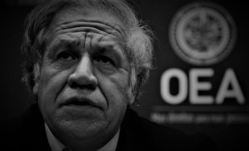 OEA retoma agenda para derrocar gobiernos: su próxima misión es Nicaragua