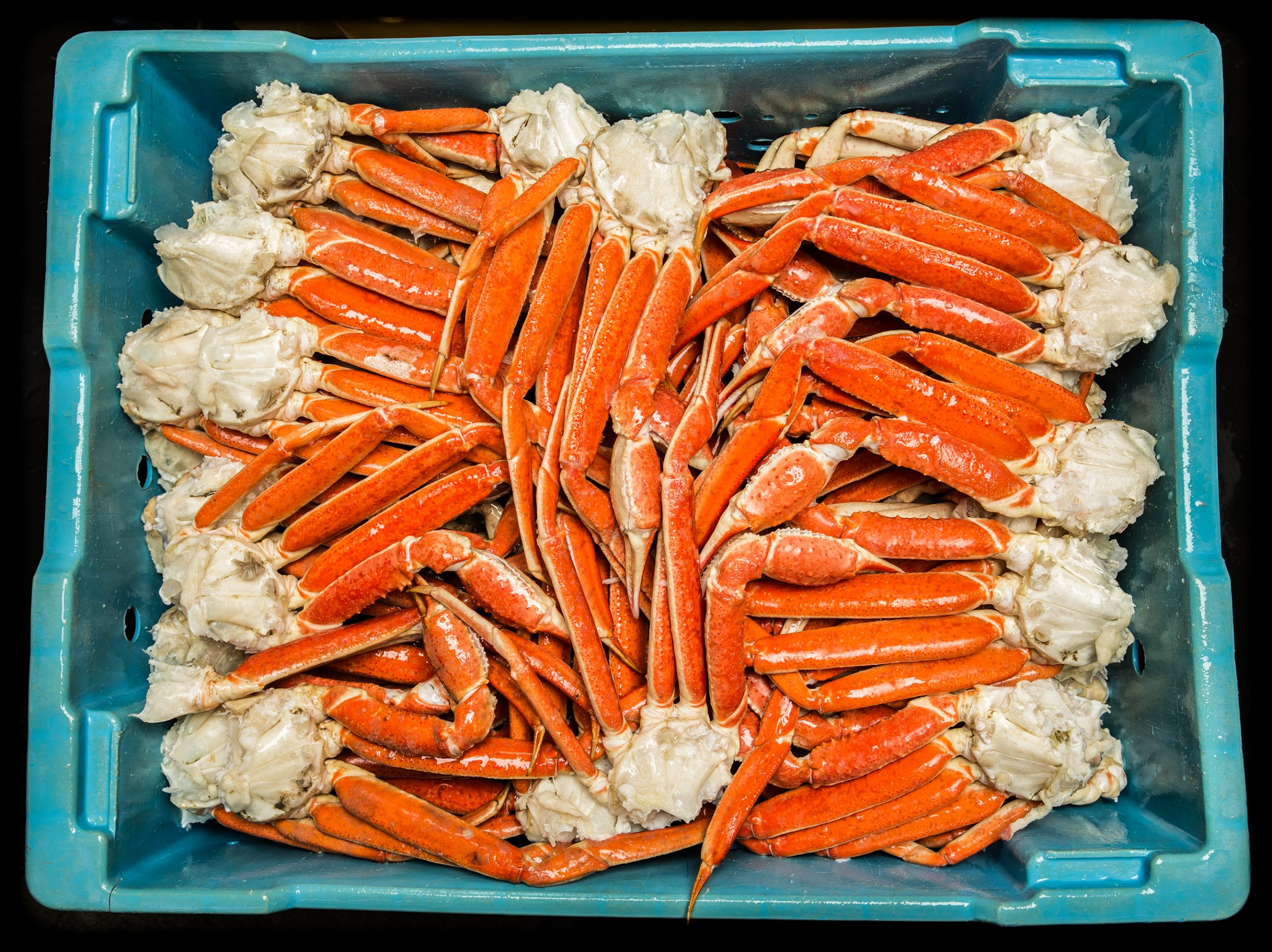 China detuvo importaciones de cangrejo chileno tras detectar rastros de COVID-19