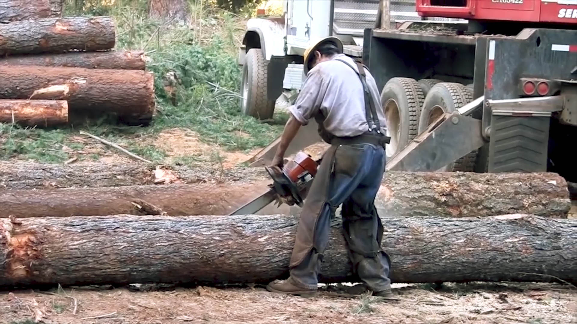 Gracias a Bolsonaro: deforestación del Amazonas alcanza su mayor nivel desde 2008