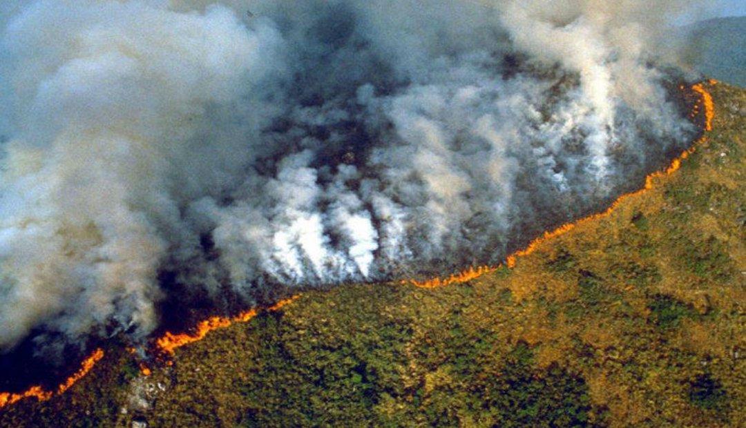 5 tragedias ambientales invisibilizadas por la pandemia