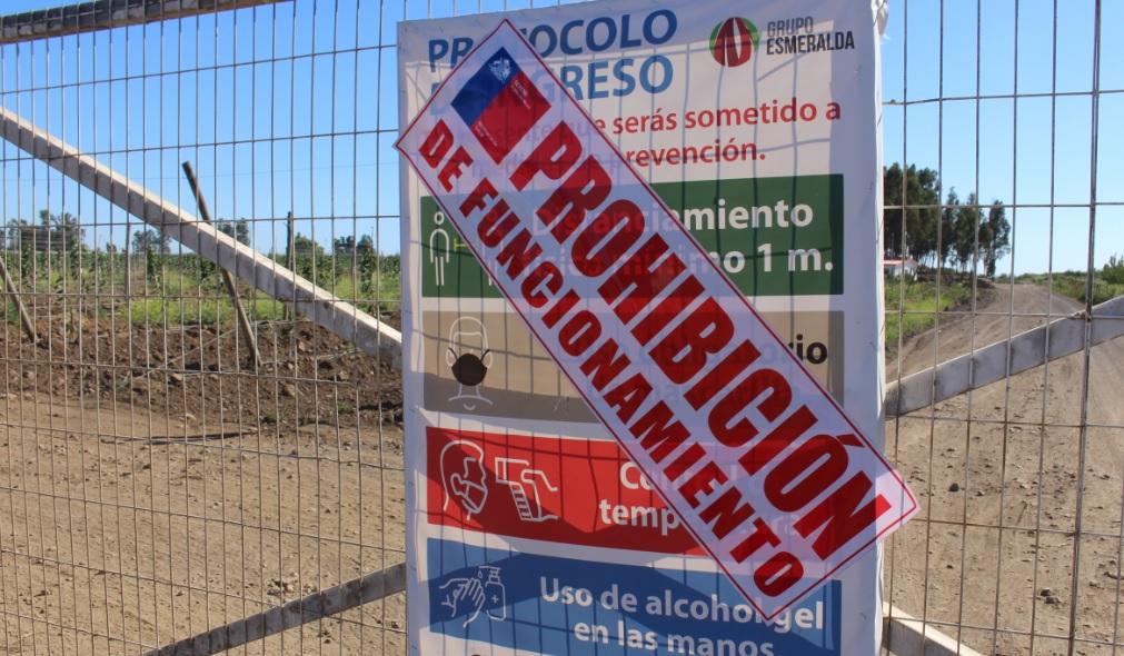 El Maule: Trabajador revela detalles de brote masivo de Covid en agrícola de Teno y culpa a la empresa