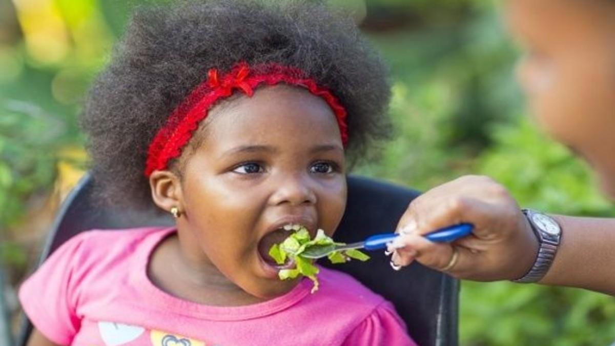 Último informe de la FAO reconoce la gestión de Cuba en seguridad alimentaria