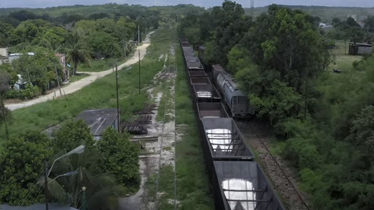 Juzgado mexicano falla a favor de más de 100 comunidades indígenas al Frenar tramo 2 del Tren Maya