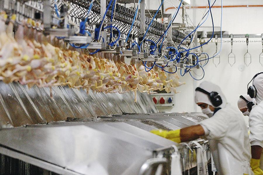 Sernac presenta demanda contra Cencosud por colusión en los precios de los pollos