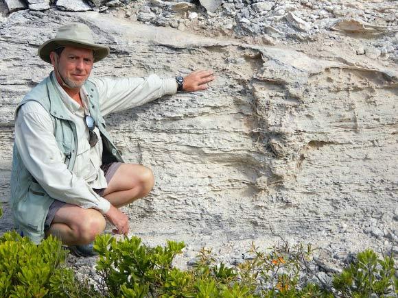 Descubren la primera madriguera de iguana de hace 115.000 años