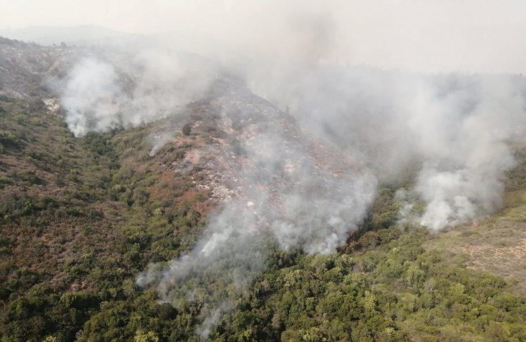 El fuego no se detiene: Incendio forestal ha arrasado con cerca de 200 hectáreas en Quilpué