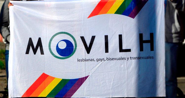 Movilh demandó al Estado ante la CIDH tras fallo judicial que acusa falsamente al movimiento LGBTI de abuso de menores