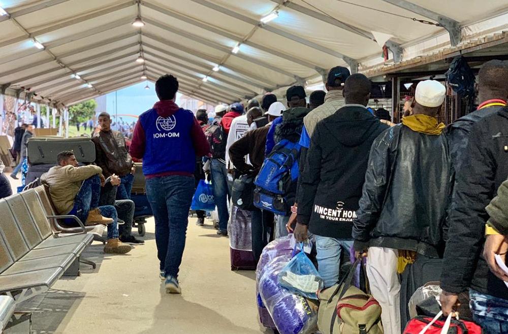 OIM: más de 3 mil personas murieron en rutas migratorias durante este año