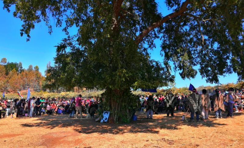 """Lef Trawun en Temucuicui finalizó con llamado a los chilenos a establecer un """"Pacto Político Social"""" con el Pueblo Mapuche"""
