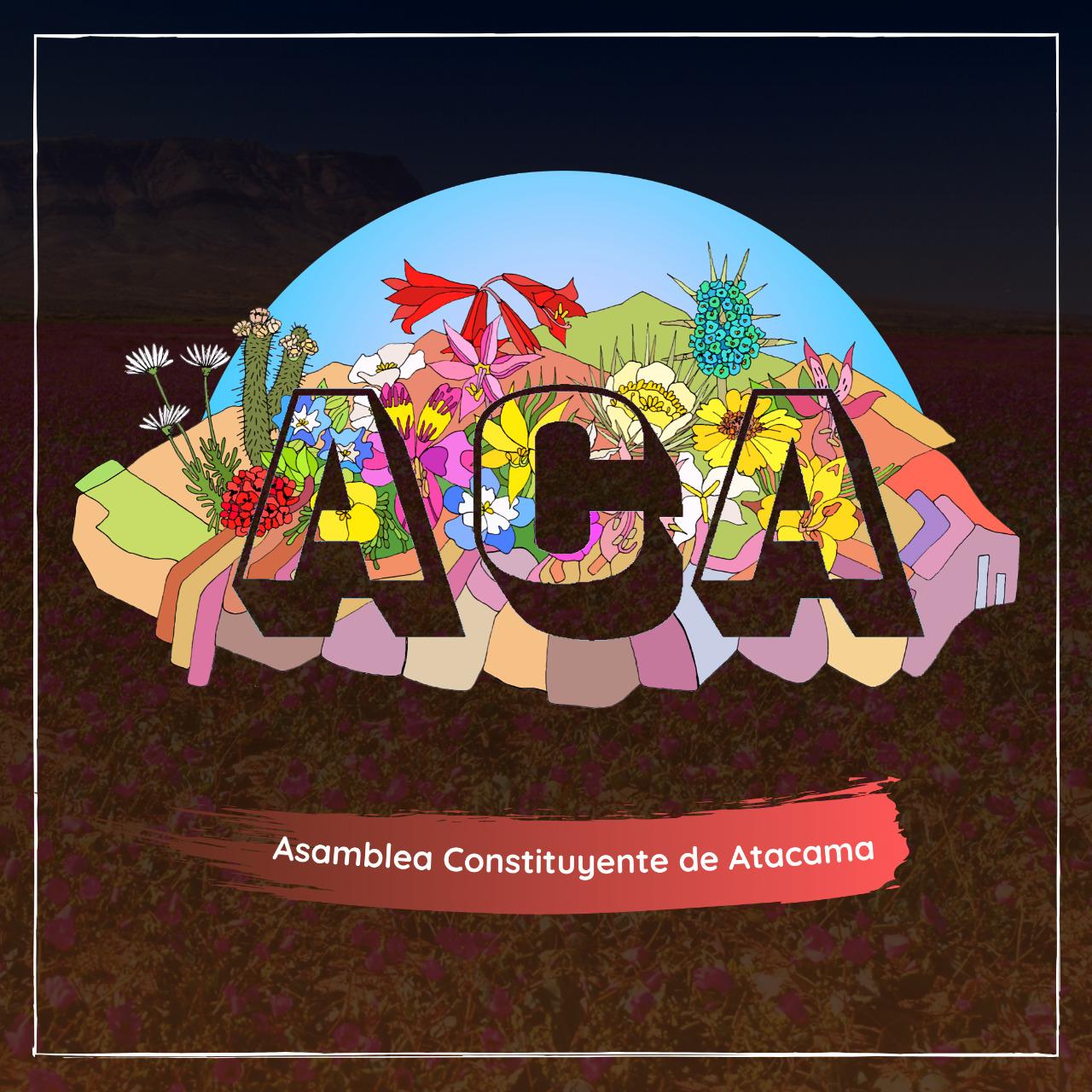 Asamblea Constituyente de Atacama presentó sus pre-candidatos a la Convención Constitucional