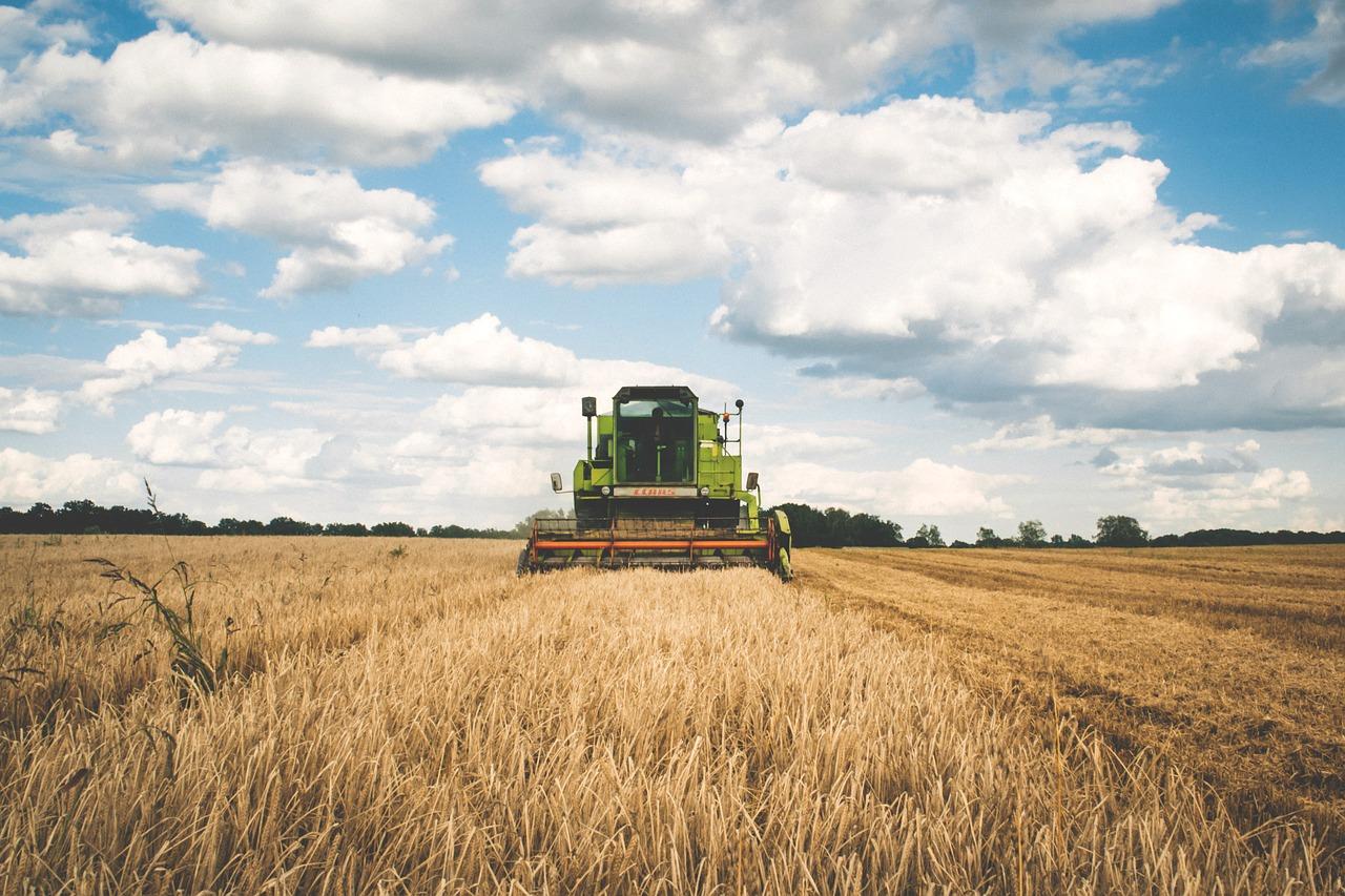 Bill Gates es el mayor propietario de tierras agrícolas en EE.UU.