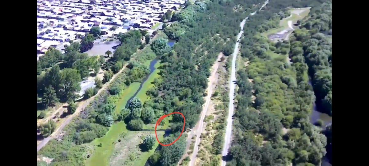 Denuncian depredación de estero y humedal en borde del río Cautín de Temuco