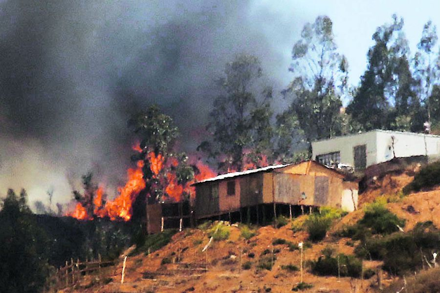 Onemi cifra en casi 3.000 las hectáreas quemadas por incendio en Quilpué
