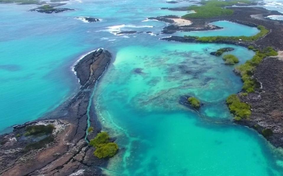 ¿Cómo las Islas Galápagos logran mantener sus hábitats naturales únicos?