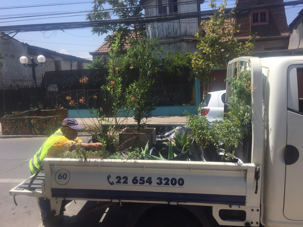 Vecinos exigen reubicación de huerto comunitario de Providencia tras orden de desalojo a la fuerza por parte de alcaldesa Matthei