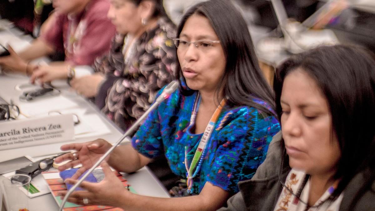 5to Foro de Pueblos Indígenas debatirá sobre el Covid-19 y sus retos