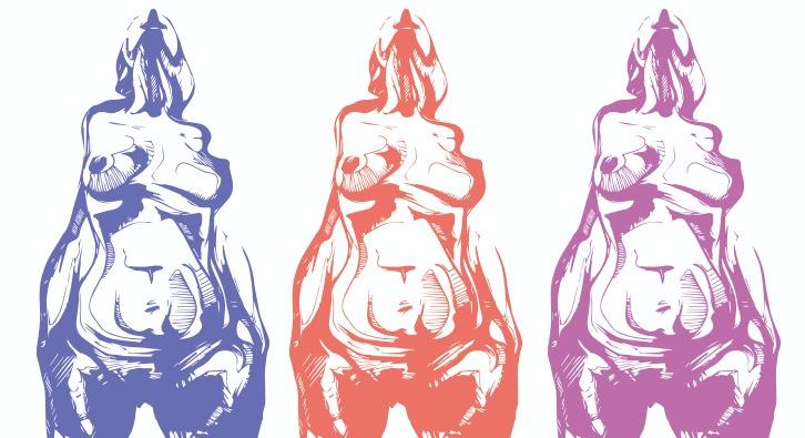 Embarazos en pandemia: ¿Dónde está el Estado?