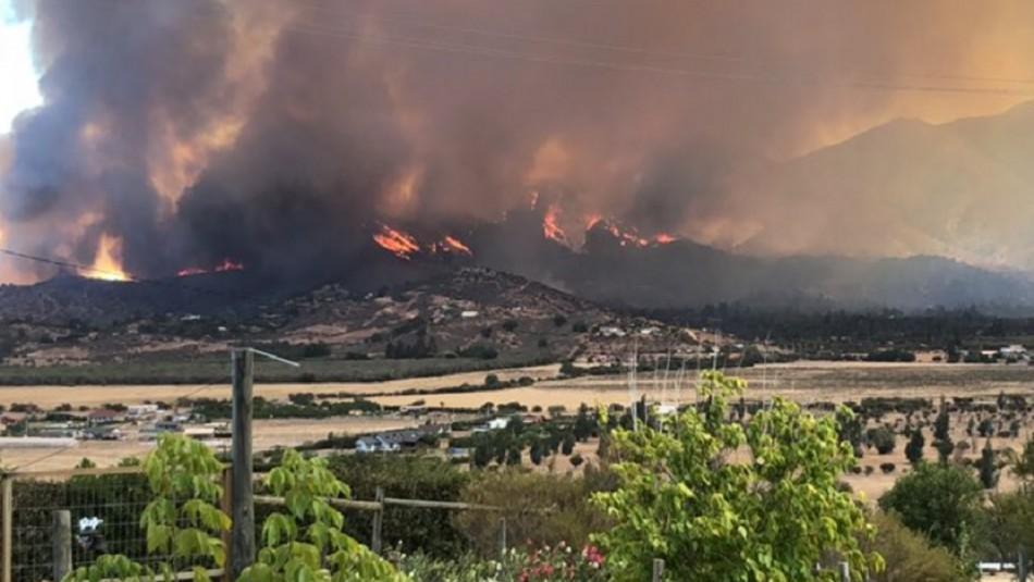 Onemi declaró alerta roja por incendio forestal en la comuna de Curacaví
