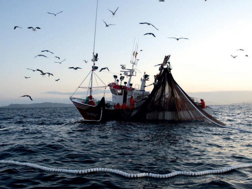 Subpesca se mueve y cita a reunión cerrada ante Supremazo que pone fin al privilegio de la pesca industrial en el norte