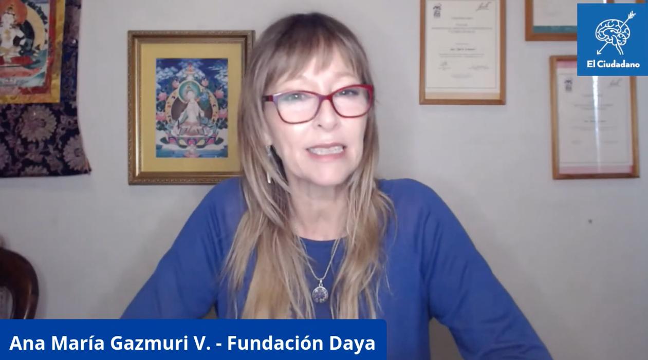Entrevista a Fundación Daya: Solo tres candidaturas presidenciales han estado por criminalizar a consumidores de Cannabis; Kast, Lavín y Jiles