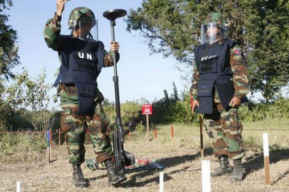 Más 100 de minas antipersonales  han sido desactivadas en la frontera de Venezuela con Colombia