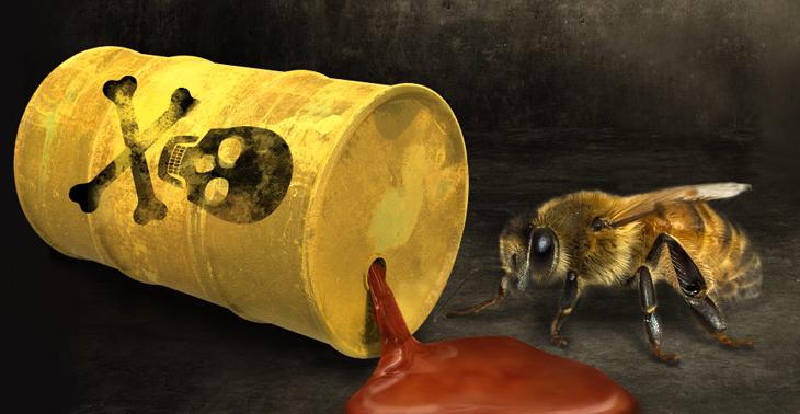 Forestal Arauco del Grupo Angelini: Un vecino muy tóxico para seres humanos y abejas