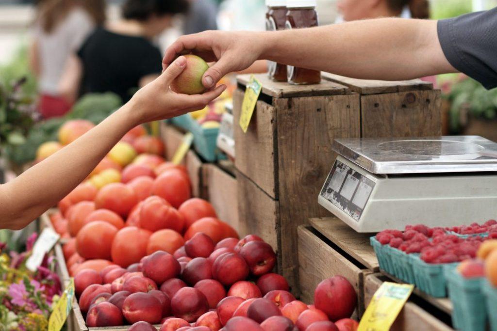 Un 36% de los chilenos ha intentado disminuir el consumo de alimentos de origen animal
