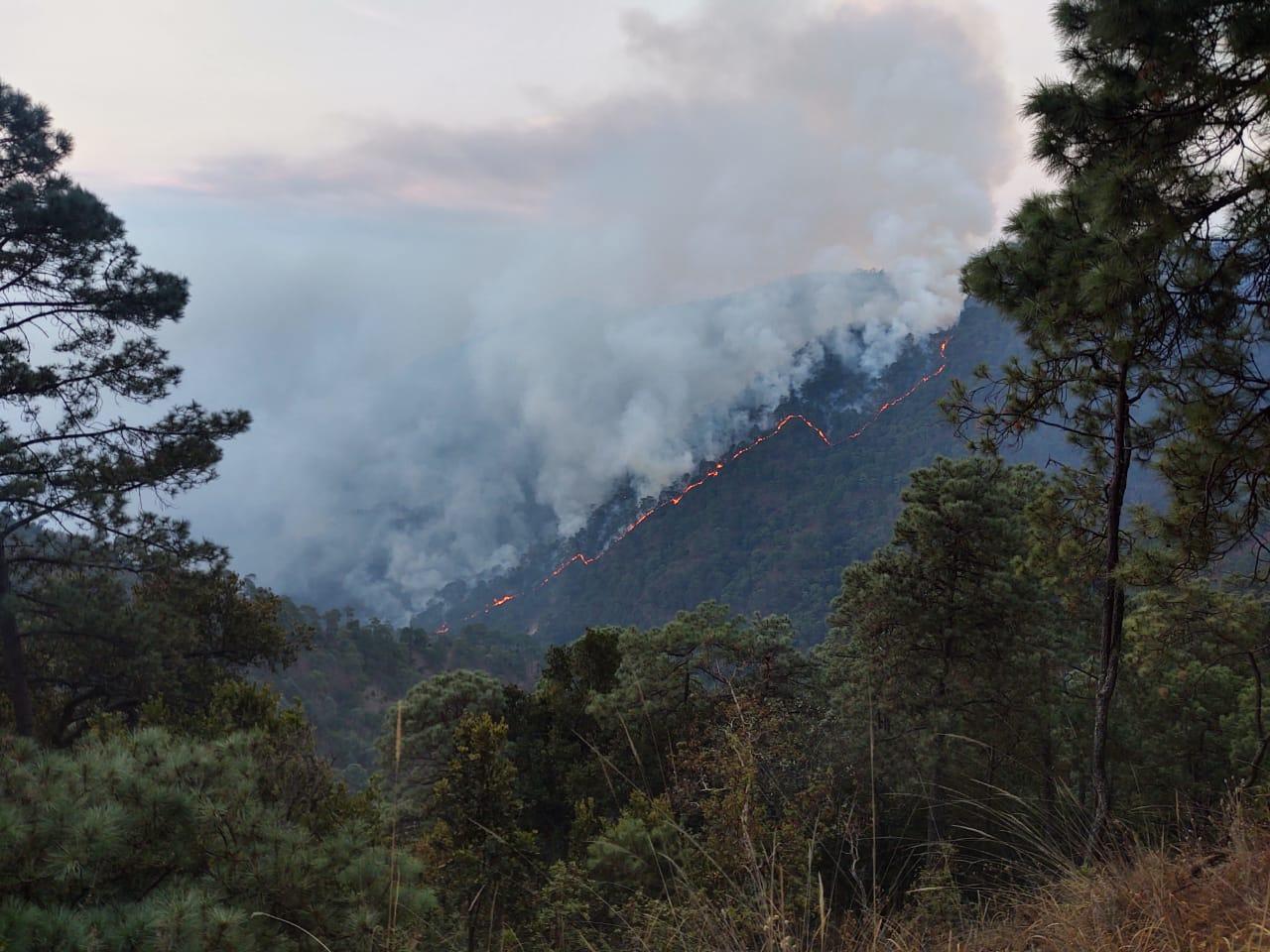 Incendios forestales duplican cifras de 2021