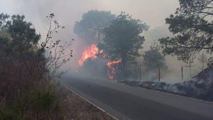 Claman en Tetela ayuda del gobierno para apagar fuego