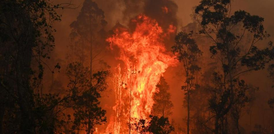(Video) Incendio en EE.UU. alcanza dimensiones descomunales hasta generar sus propias condiciones climáticas