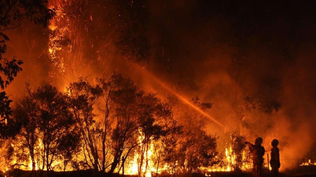 Incendios forestales de Australia registrados hace dos años aumentaron la temperatura terrestre