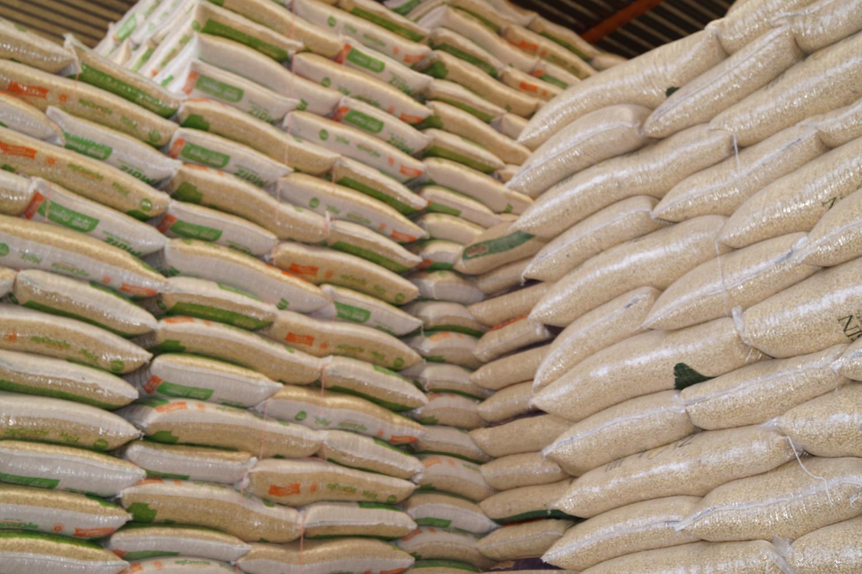 Cae producción de maíz en México