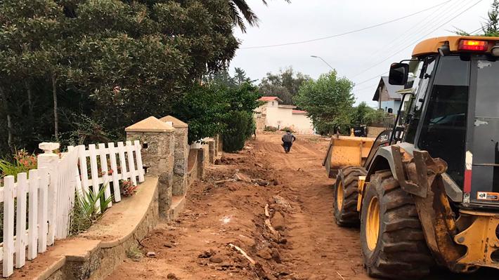 Familia de Nicanor Parra: Obras de pavimentación pusieron en peligro la tumba del antipoeta en Las Cruces