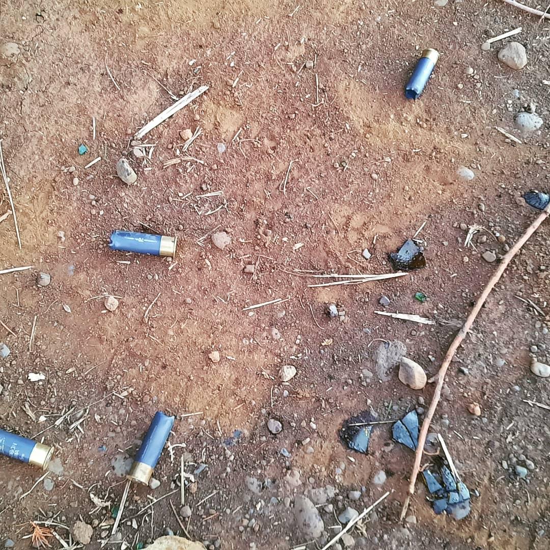 Desalojo termina con heridos y menores retenidos por carabineros al interior de Comunidad Mapuche