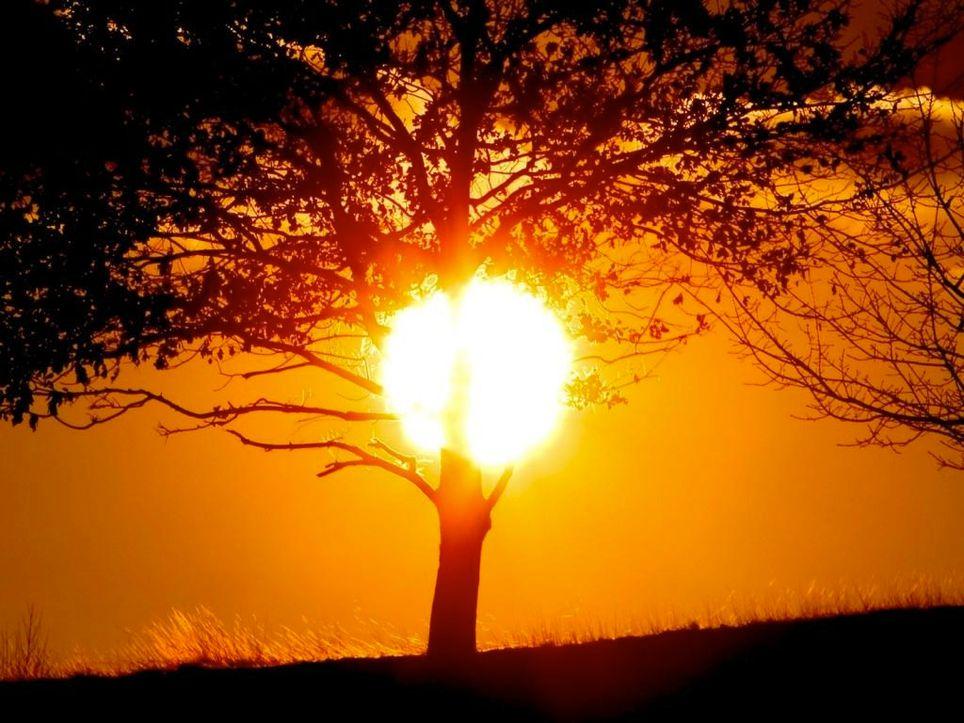El sol, en su punto, en ocho estados del país