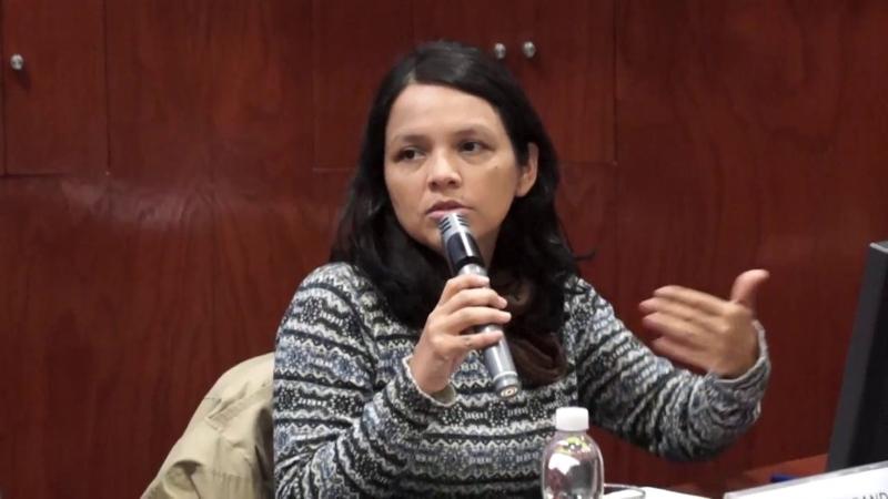 """Anahí Durand, socióloga: """"En Perú hay una crisis de régimen que ha afectado a todas las instituciones"""""""