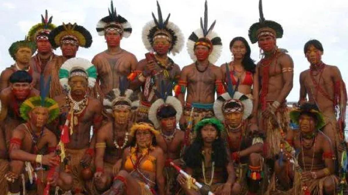 Conozca el árbol que atesoran los indígenas tupís en Brasil