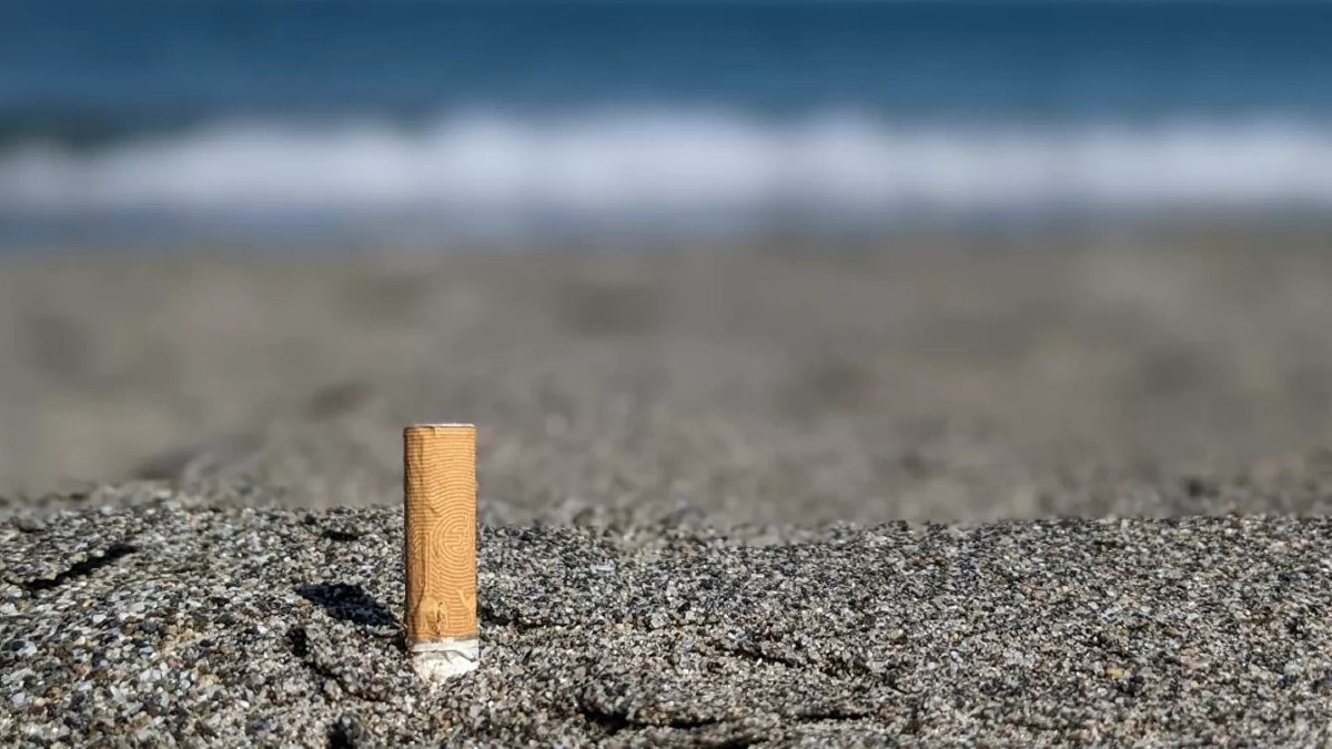 ¡El cigarrillo también es peligroso para el medioambiente! Estudio revela su impacto en el ecosistema marino