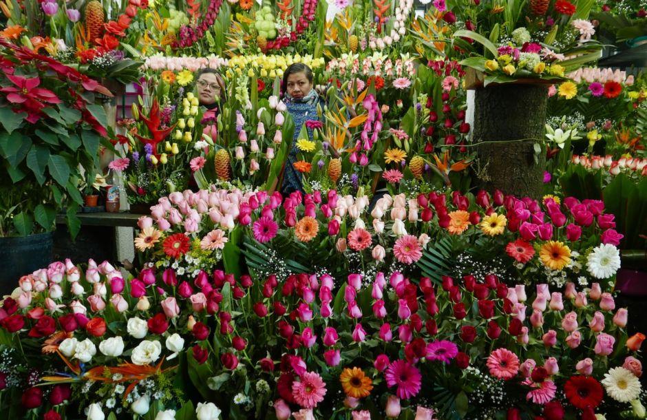 Prevén 2 mil millones de pesos en ventas de flor por 10 de Mayo