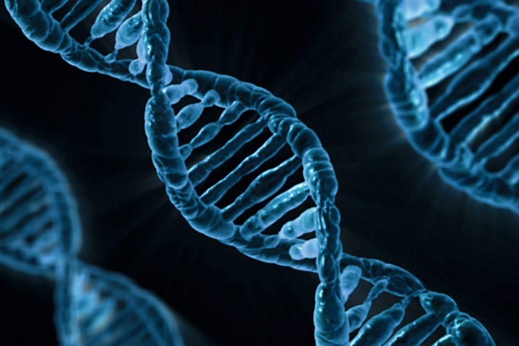 ¿Puede el COVID-19 infiltrarse en nuestro genoma?