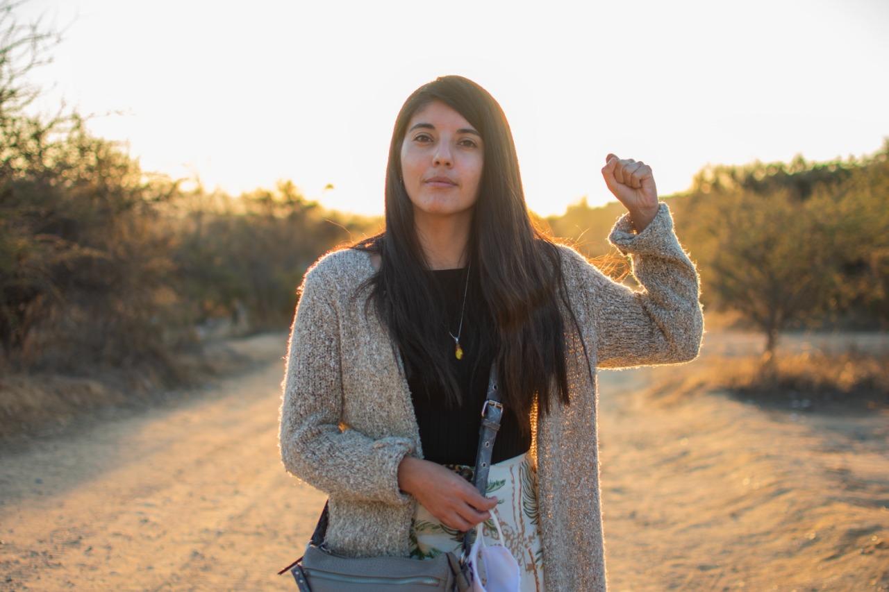 Janis Meneses, Constituyente Electa Distrito 6: Por la unidad de los que luchan en el territorio y en la convención