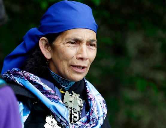 Machi Francisca Linconao fue la más votada: Estos son los 17 representantes de los pueblos originarios que redactarán la nueva Constitución
