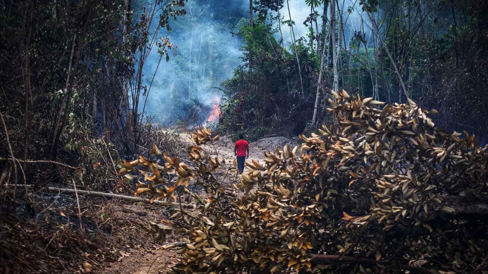 Denuncian que ocupación ilegal en la Amazonía creció 56 % por «efecto Bolsonaro»