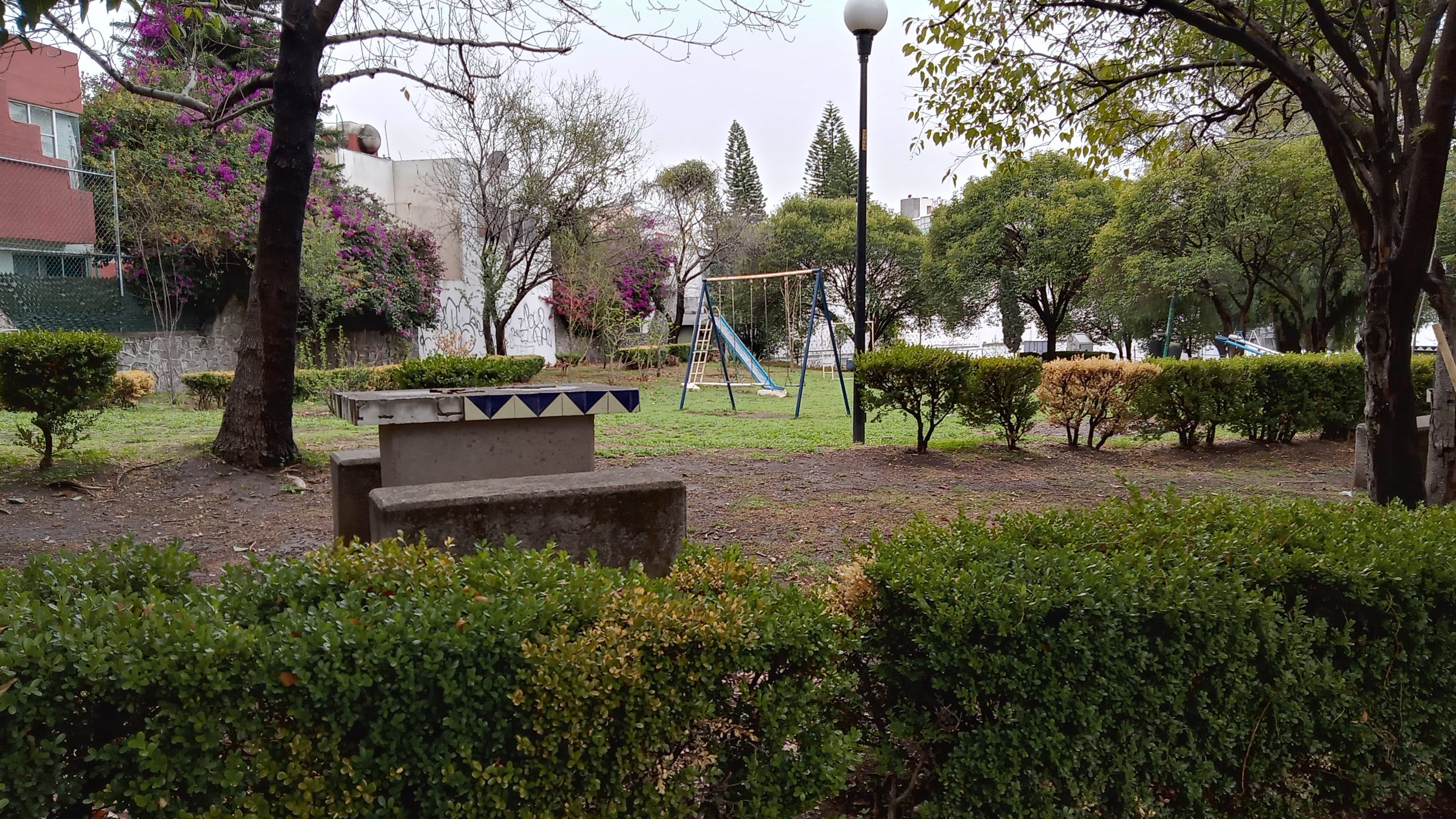 Limpiemos un parque: apropiarse de los pulmones de la ciudad