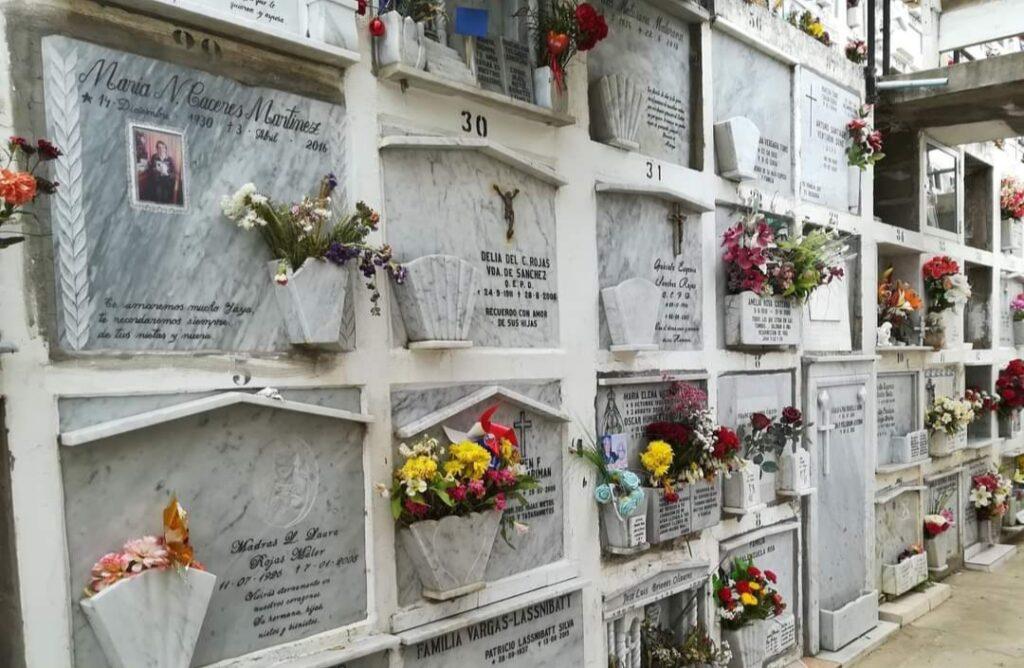 Denuncian comercio ilícito de piezas dentales de cadáveres en cementerio de Viña del Mar