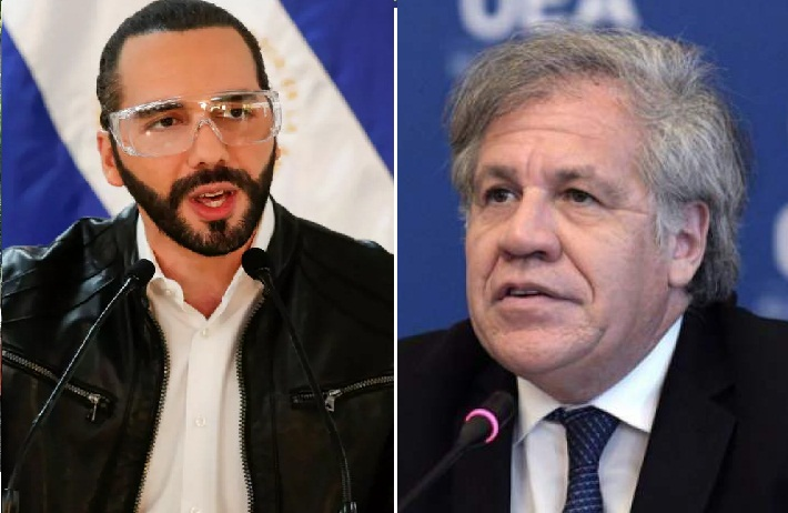 Pourquoi l'OEA s'est-elle brouillée avec le Salvador et quelles sont les conséquences possibles de ce conflit ?