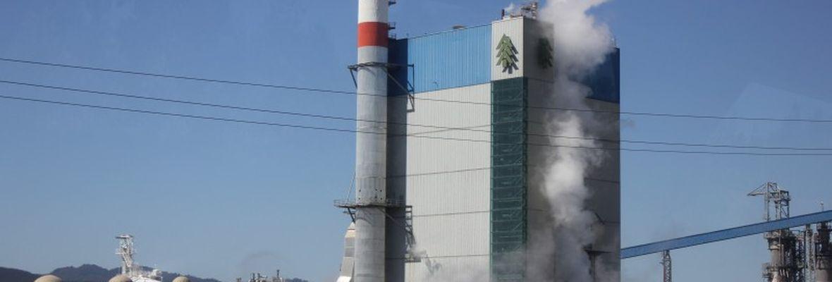 Arauco, la empresa con un despreciable prontuario socioambiental que auspicia a «La Roja»