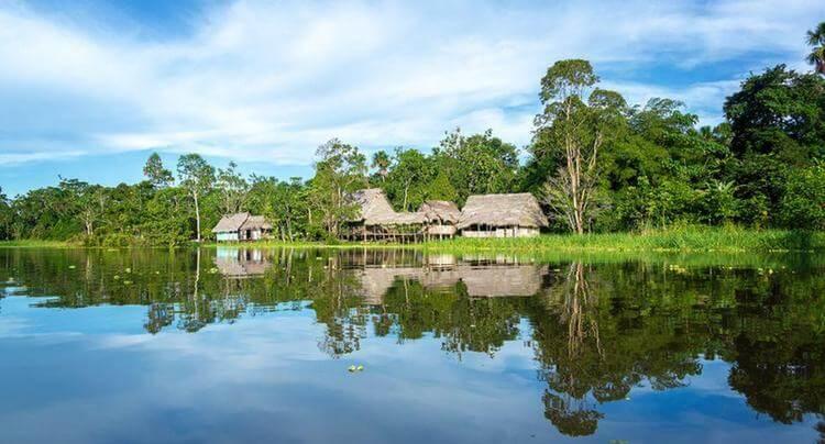 plomo sangre indígenas amazonía peruana