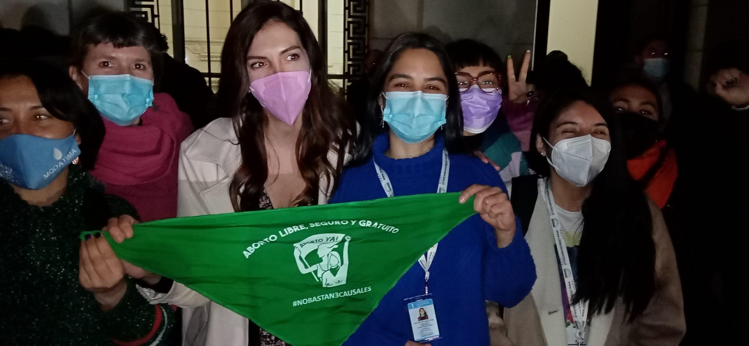 """Constituyente por Magallanes Elisa Giustinianovich Campos:""""Vamos a llevar todo el corazón y la fuerza feminista de la Patagonia rebelde a la Mesa de la Convención"""""""